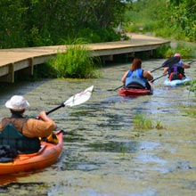 activites-canoe